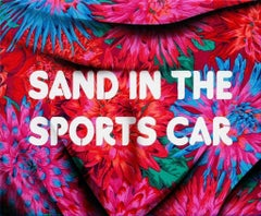 Sand in the Sports Car, 2017, Adam Mars, Acrylic, Spray Paint, Fabric Panel
