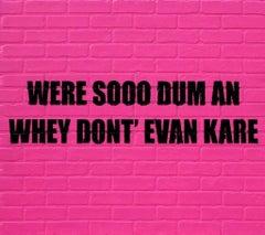 Were Sooo Dum An Whey Dont' Evan Kare, 2013, Adam Mars, Text Based, Faux Brick