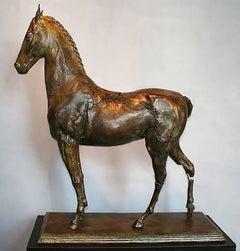Etrius (sculpture, bronze, horse, equine)