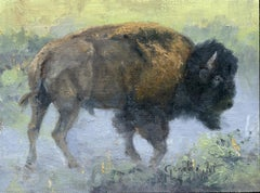 Bull Bison in Dust