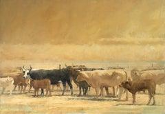 The Dusty Herd