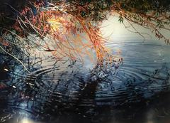 David Kessler - Lace Over Rings