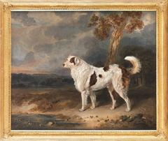 Portrait of a Dog, probably a Landseer
