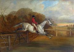 A grey steeplechaser taking a fence