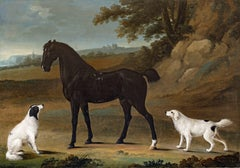 A Dark bay horse with two white setters