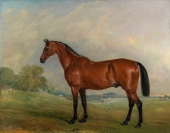 A bay thoroughbred horse in a landscape by John Ferneley Senior
