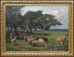 Pastoral Landscape With Sheeps