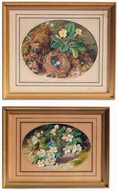 Paire of 19th century still Life Watercolors