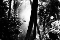 'Sri Lanka Smokey Light'  Limited Edition Silver Gelatin print