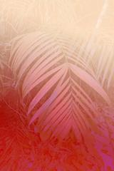 'Pink Palm' Elsa Leydier Limited Edition
