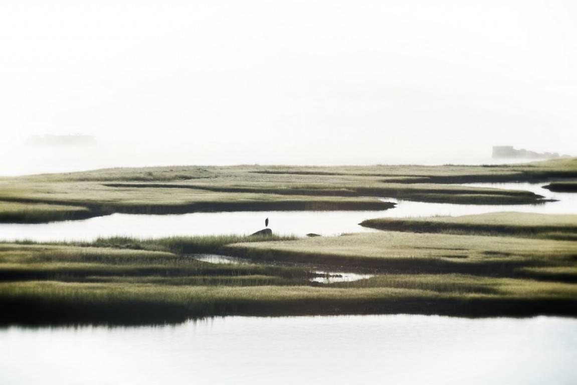 'Massachusetts Mist' (Archival Pigment Print)