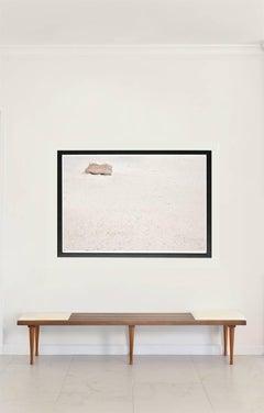 The Seed / Desert Flower – Italy, Large Print (Framed)