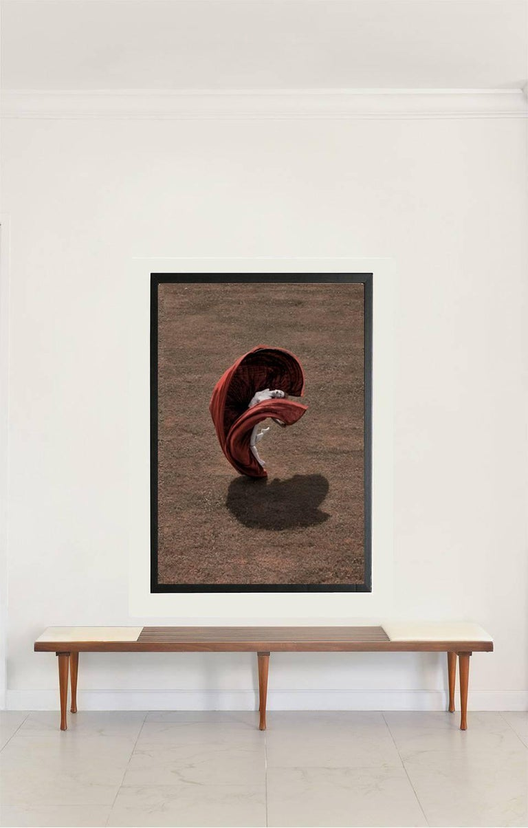The Heart, Desert Flower, Lado Di Como, Large Framed Archival Pigment Print