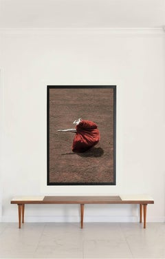 Petals and The Wind / Desert Flower – Italy, 2011, Large Print (Framed)