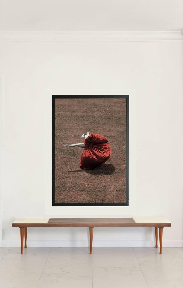 Guilherme Licurgo - Petals and The Wind (Archival Color Pigment print)  Framed 1