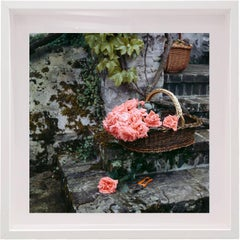 Baroness Louise De Waldner Gardens, Small Framed Color Photograph