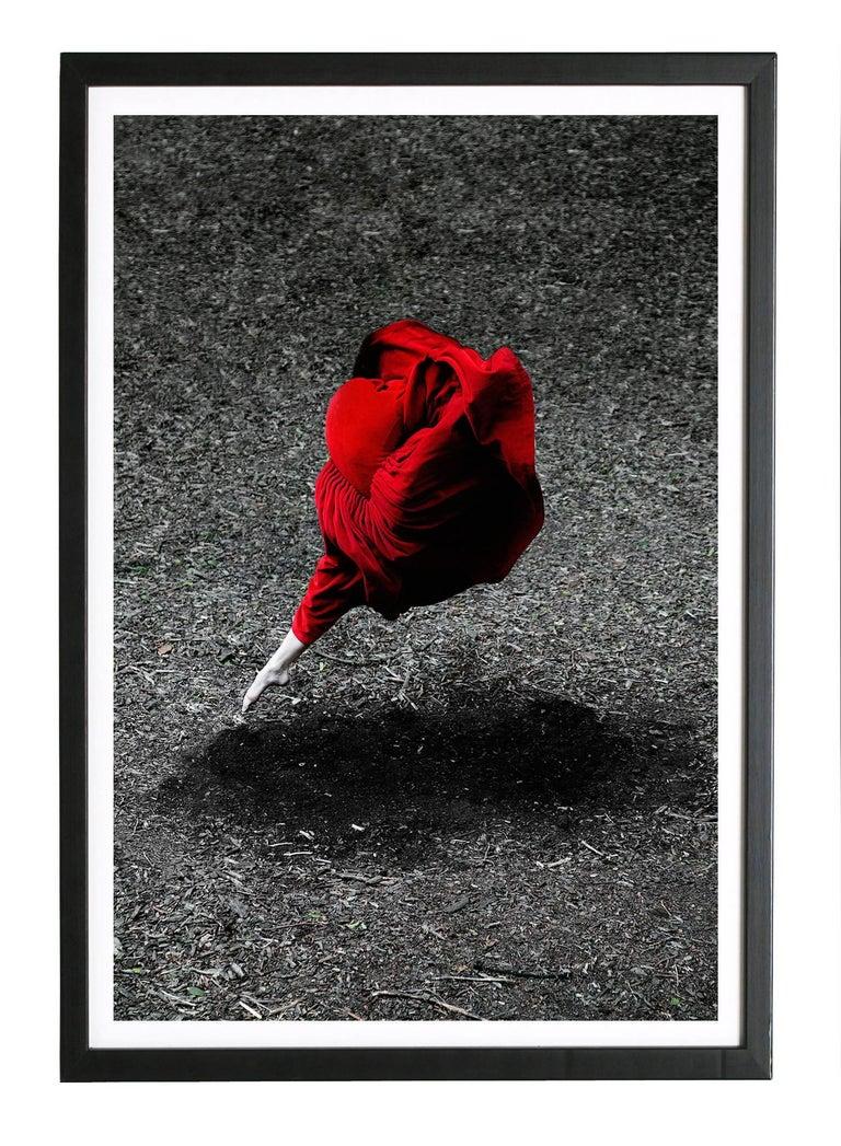 Desert Rose (Archival color Pigment print) 6