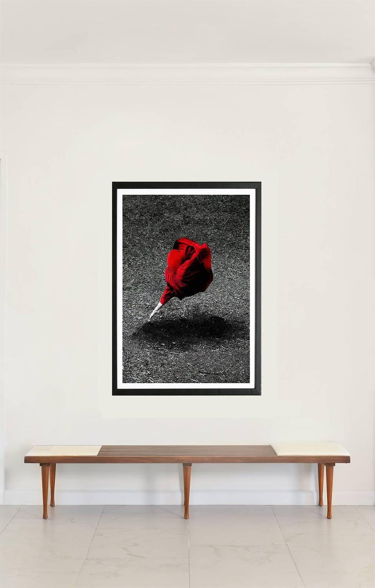 Guilherme Licurgo - Desert Rose (Archival color Pigment print) 1