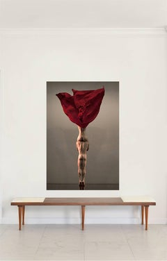 Lone Rose- NYC, Large Archival Color Pigment Print