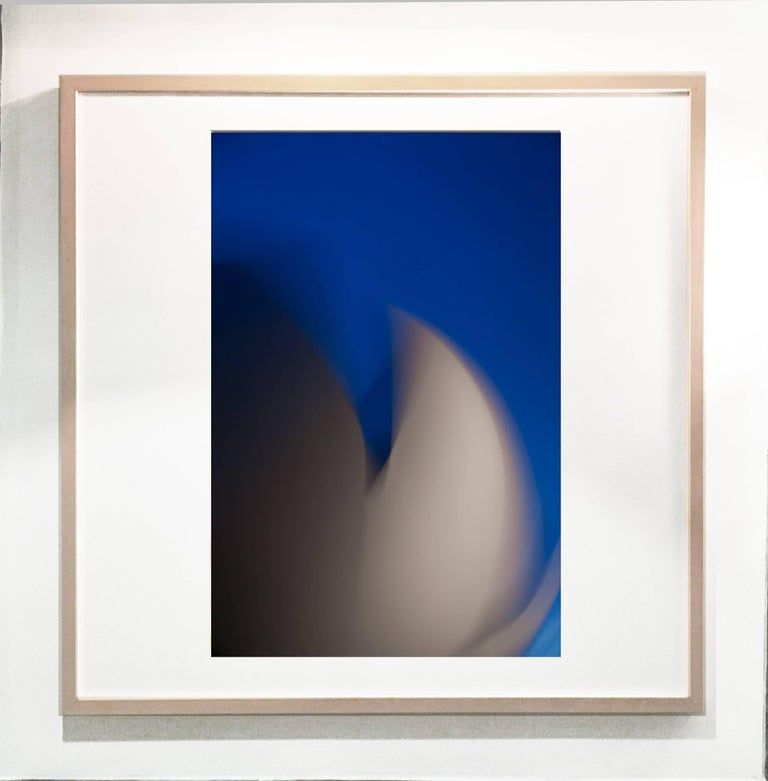 Jaime Palmera - Art Science Museum 33 Color photograph on semilusted archival photo paper framed 1