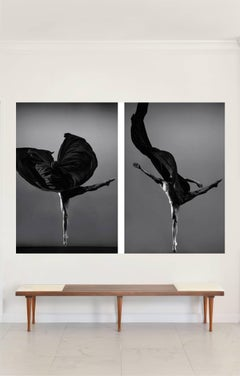 Seeds IV and Seed III, Black and White Photograph Diptych