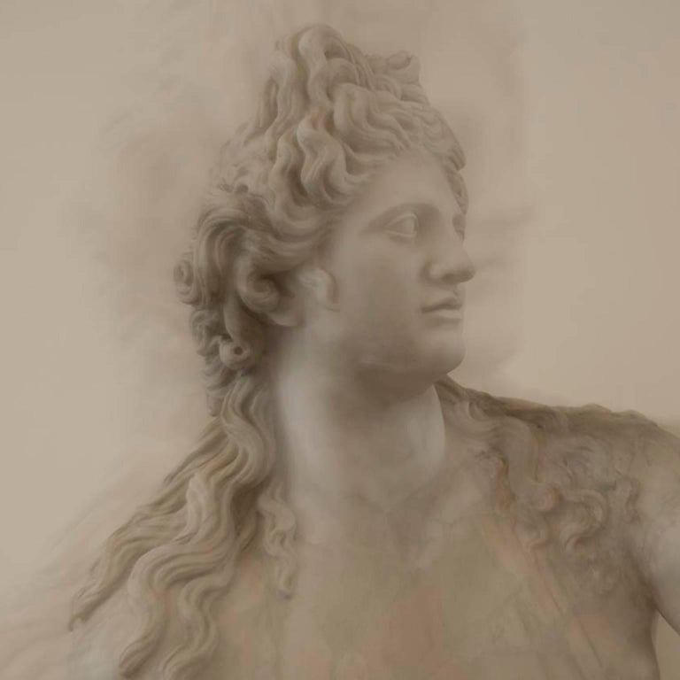 "Roman Statue Study 06 39"" x 39"" Archival Pigment Print 2016 __________________  Touching the skin of the past is an extraordinary collection of Roman Statues captured with the ICM technique in order to let appear the marble skin like a true human"