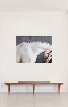 'Titan Neck II'- Horse Series Color Photograph