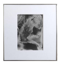 Untitled (Solarized Double Exposure), Framed Solarized Vintage Print