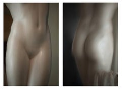 Roman Statue Study, Color Large Diptych Photograph