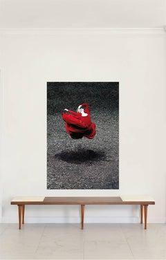 Desert Rose III, Medium Framed Color Photograph, 2014