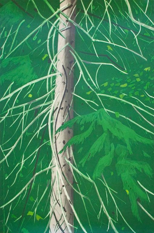 Alex katz spruce print for sale at 1stdibs for Katz fine art