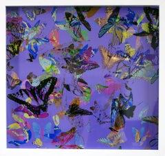 Flutter - A