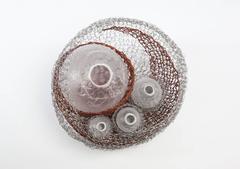 Fragile Nest of Life