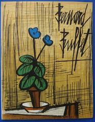 Small Blue Primrose - Original lithograph - Plate signed