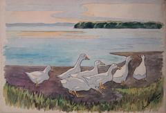 White Ducks Family - Original handsigned watercolor - c. 1899