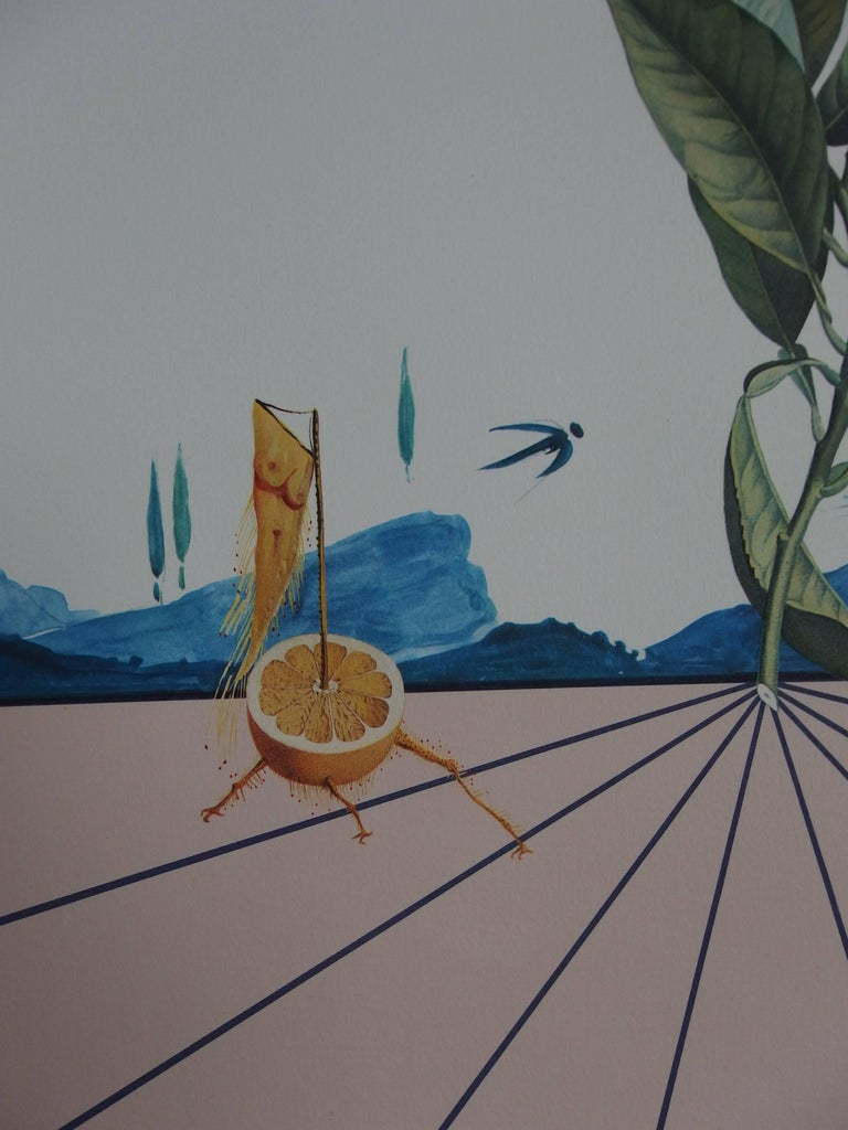 Flordali I - Original Lithograph - 1981 - Gray Figurative Print by Salvador Dalí
