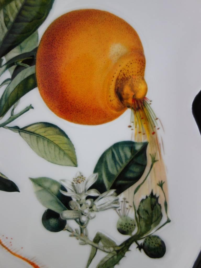 Flordali, Erotic Grapefruit - Porcelain dish (Black finish) For Sale 2