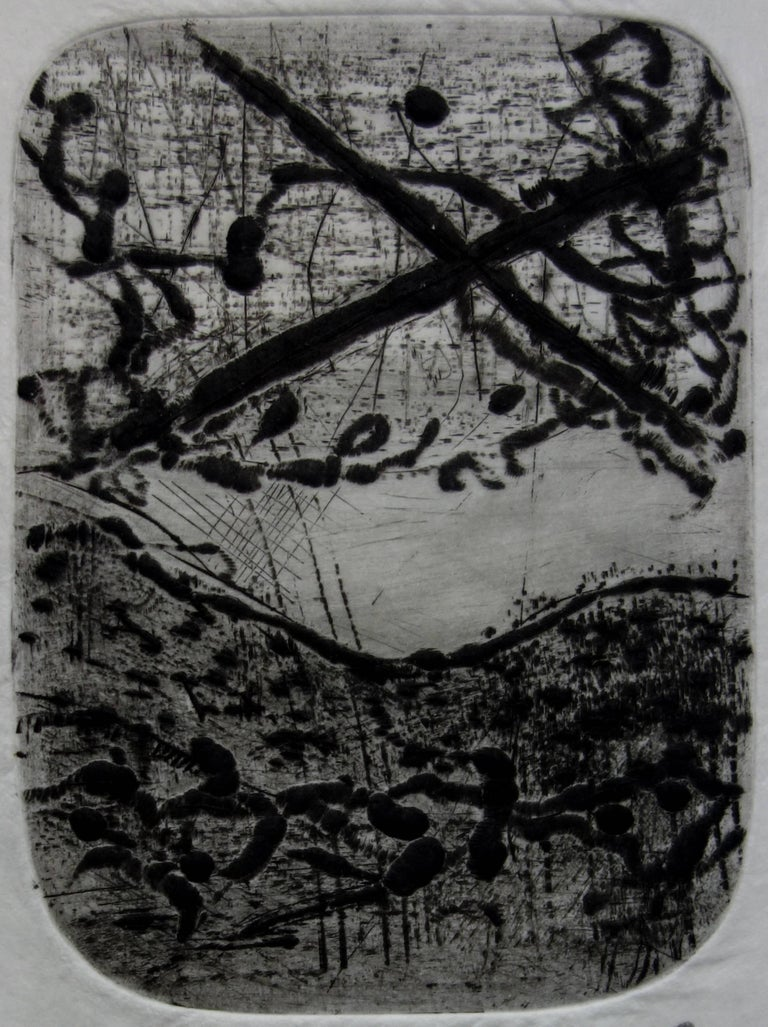 Dreamy Landscape - Original etching with aquatint - Handsigned - Abstract Print by Julius Baltazar