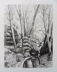 Magpie Near a River - Original etching, 1943