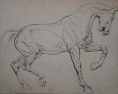 Study of a horse after Degas- Original Pencil Drawing