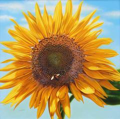 Blossom 11 (Sunflower and Bee)