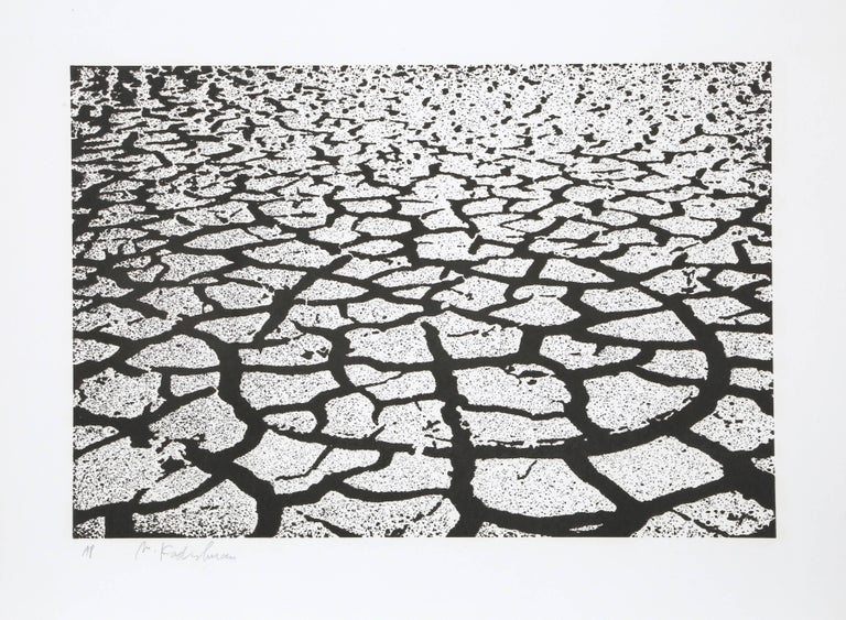 Menashe Kadishman Abstract Print - Black Earth