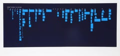 Barnett Newman: The Paintings (Blue)
