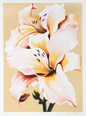 Peach Lily on Beige