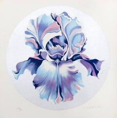 Iris on Silver