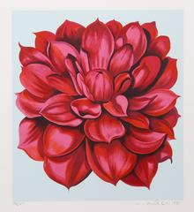 Red Dahlia from the Stamps series