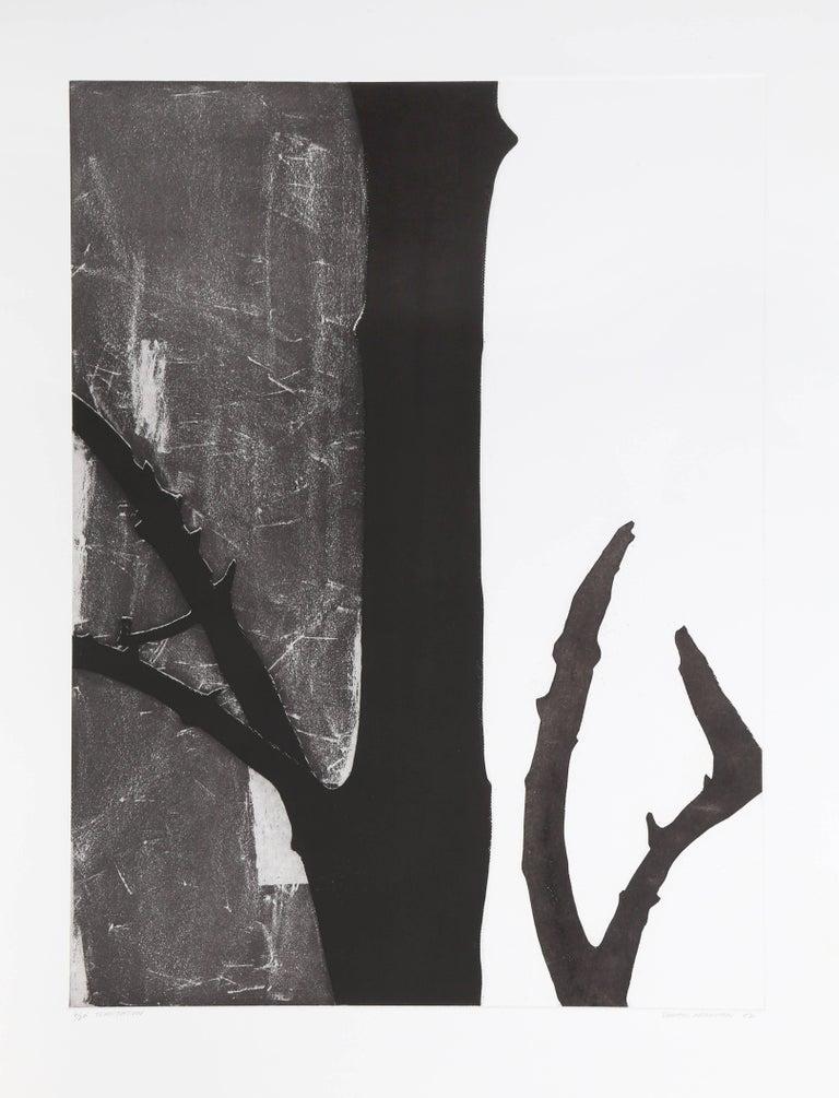 Donald Newman Abstract Print - Temptation
