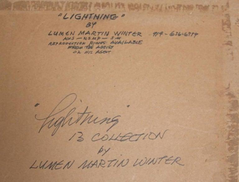 Lumen Martin Winter,