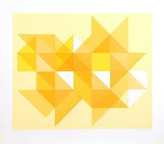 Triangle Y