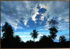 Wordsworth in the Tropics, Hyper-realist Painting by Ian Hornak